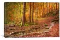 Forest in autumn colors, Canvas Print
