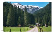 Road toward the green forest and the Swiss Alps. S, Canvas Print