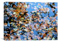 Leaves in the river, Canvas Print