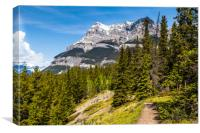 Canadian mountain trail , Canvas Print