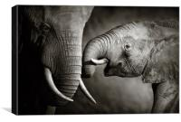 Elephant affection (Artistic processing), Canvas Print
