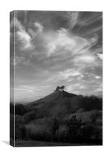 Colmer's Hill Black and White, Canvas Print