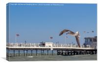 Seagull in Flight at Worthing Pier, Canvas Print