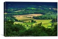 Rolling fields of the South Downs in mid summer., Canvas Print