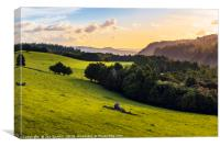 Waihoanga Creek view, Canvas Print