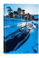 Ice on the Marshaw Wyre, Canvas Print