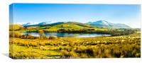 Over Water and Skiddaw, Canvas Print