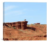 Lone cowboy in Monument Valley, Canvas Print