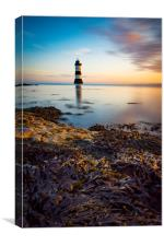 Sunrise at Penmon lighthouse, Canvas Print