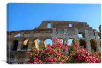 Colosseum Rome in sunshine, Canvas Print