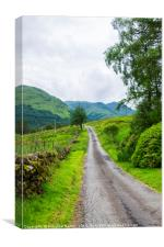 Scottish countryside lane with grazing sheep, Canvas Print