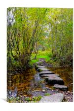 Newtonmore stepping stones, Canvas Print