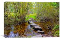 Stepping stones Newtonmore, Canvas Print