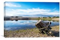 Spey Bay Driftwood, Canvas Print