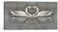 Swans Heart To Heart Sketch Style Drawing, Canvas Print