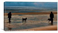 A Dog Walk Along The Beach, Canvas Print