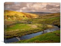 Near Cotterby Scar, Canvas Print