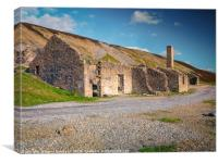 A Ruined Building at Old Gang Mill, Canvas Print