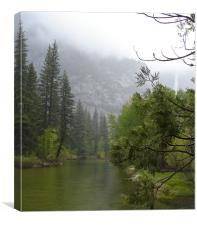 Yosemite Park, Canvas Print