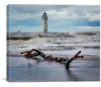 Perch Rock  dritwood, Canvas Print