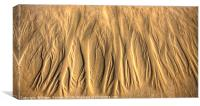 Patterns In The Sand, Canvas Print