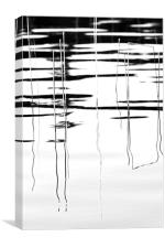 Light And Shadow Reeds Abstract, Canvas Print