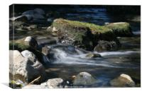 Water flowing over a rock, Canvas Print