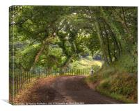 Primrose Lane Country Walk, Canvas Print