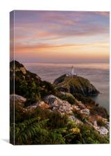 South Stack , Canvas Print