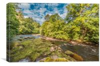 River Tees between Cotherstone and Romaldkirk, Canvas Print