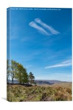 Giant Jellyfish flying over the Pennines, Canvas Print