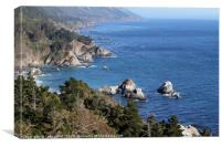 Gorgeous coastal view off Highway 1, Canvas Print