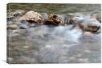 spring with rocks nature scene, Canvas Print