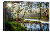 The Weir at Pillaton, Canvas Print
