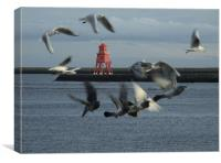 Gulls and Harbour light  041207 , Canvas Print