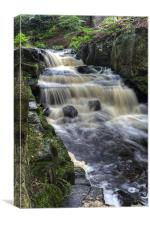 Lumsdale Valley Falls, Canvas Print