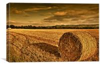 Straw bale in Susex, Canvas Print