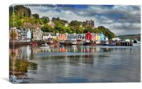 Tobermory Bay and Harbour, Canvas Print