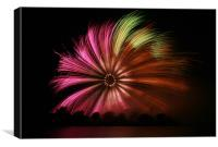 Giant Catherine Wheel, Canvas Print