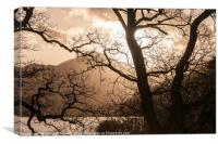 Tree in Silhouette on the Banks of Derwentwater, Canvas Print