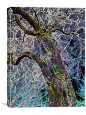 THE LIGHTNING TREE, Canvas Print