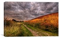 Moorland Track, Canvas Print