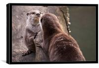 Otters, Canvas Print