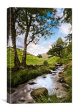 Chew Brook, Canvas Print