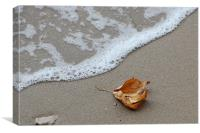 Leaf and wave, Canvas Print