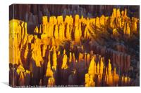 Silent City, Bryce Canyon National Park, Canvas Print