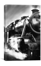 Black and White Train, Canvas Print
