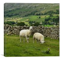 In the Moors, Canvas Print