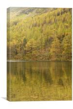 Buttermere - Reflections of Autumn , Canvas Print