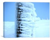 Ice Cold in Glen Shee, Canvas Print